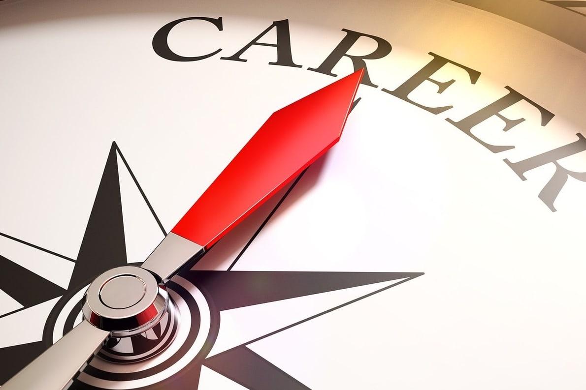 Swiss Career Survey