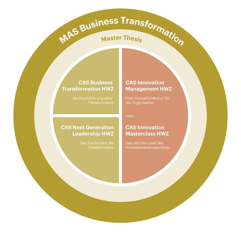 Grafik MAS Business Transformation