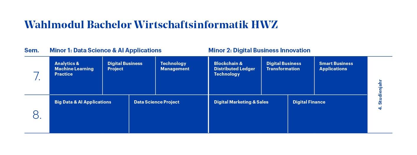 Diagramm Wahlodul Minor Bachelor Wirtschaftsinformatik HWZ