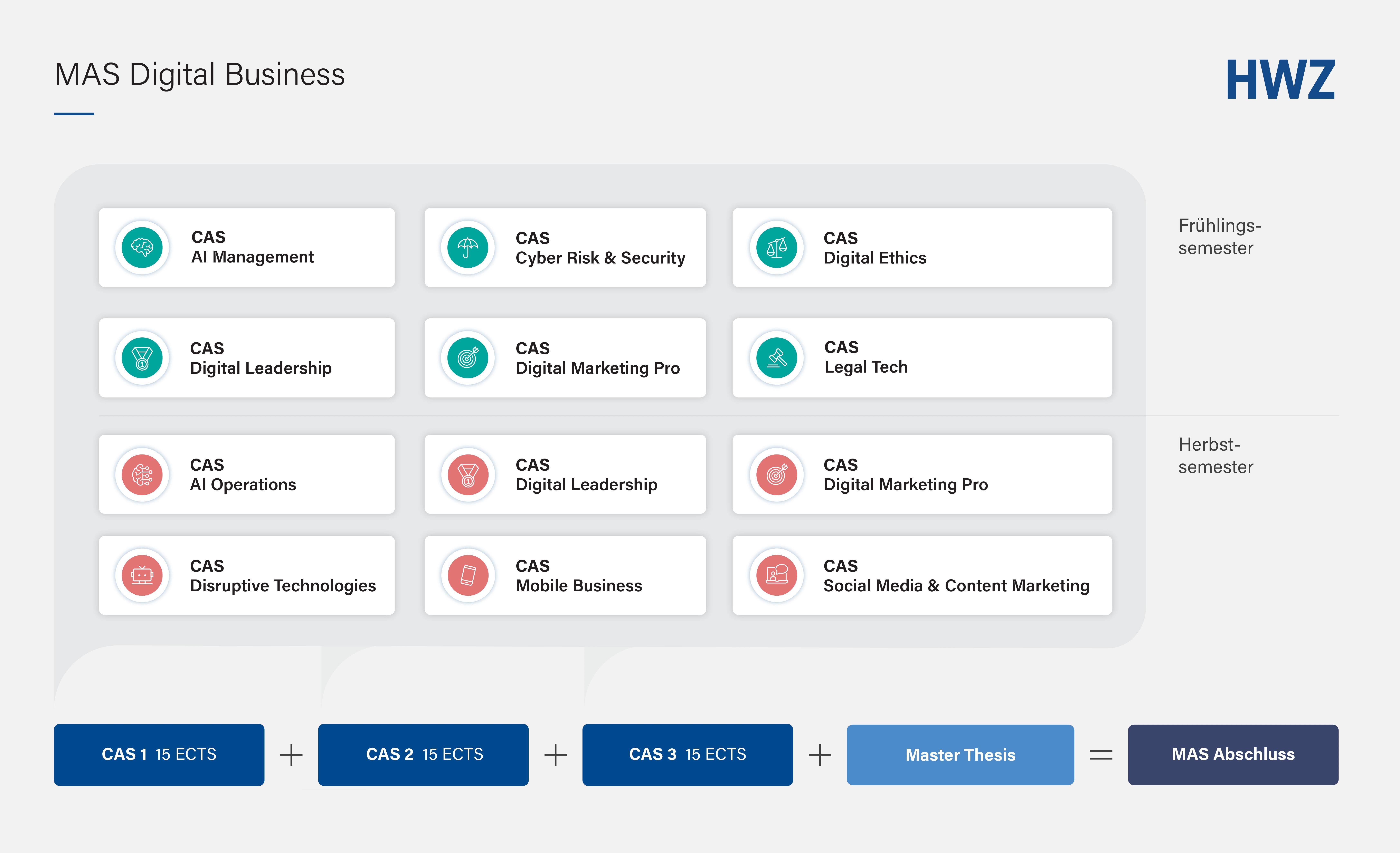 Grafik Auswahl CAS zum MAS Digital Business HWZ