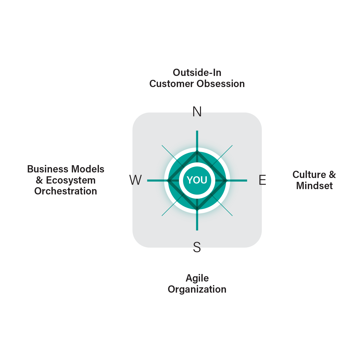 HWZ Digital Leadership Compass