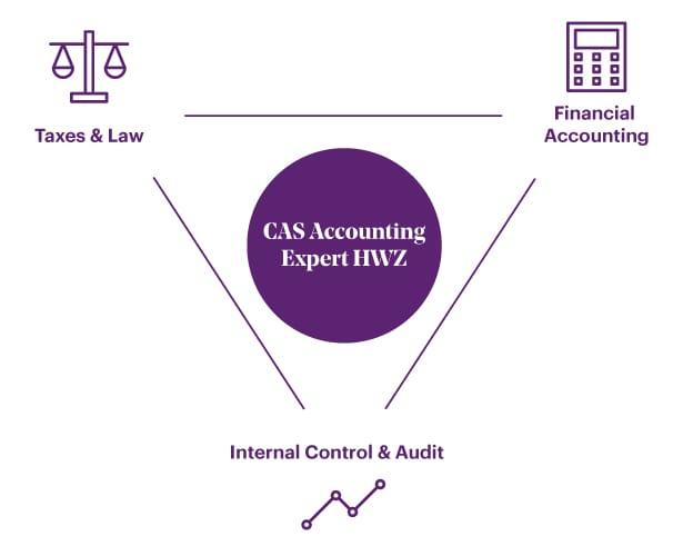 Grafik CAS Accounting Expert HWZ