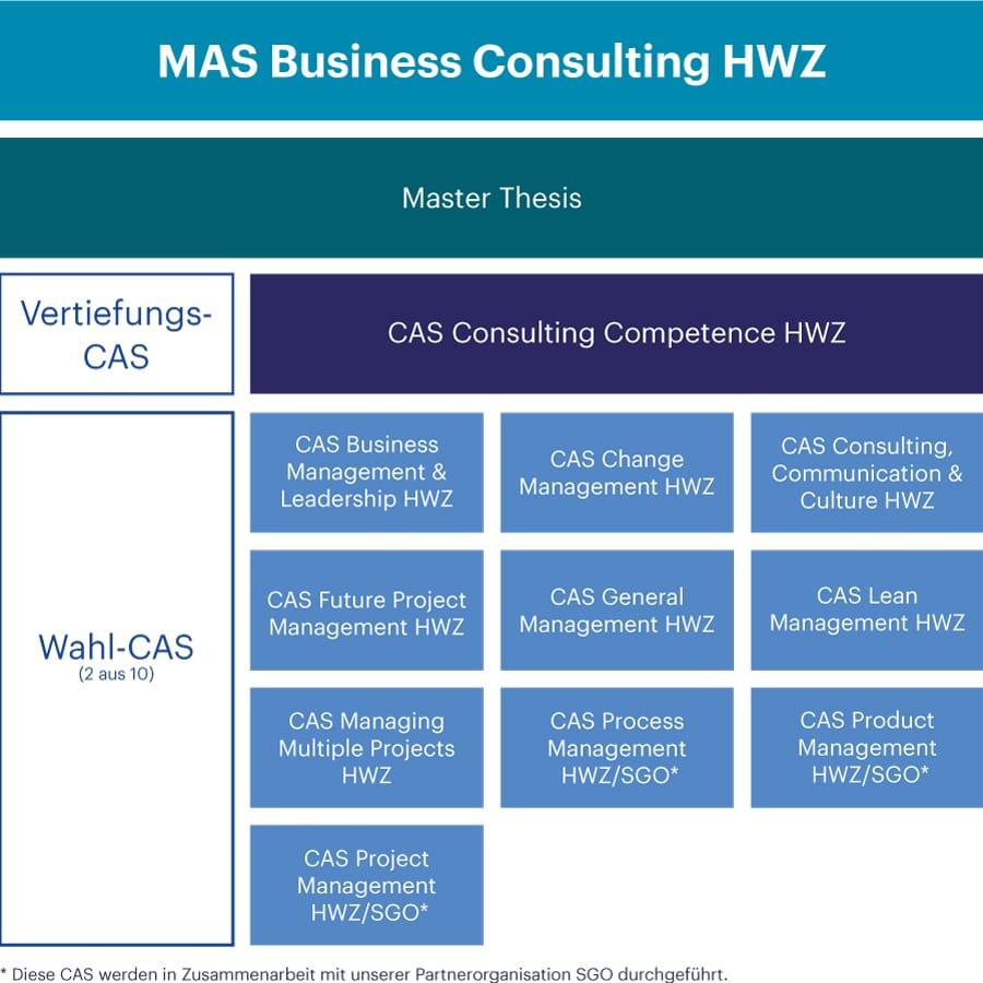 Grafik MAS Business Consulting