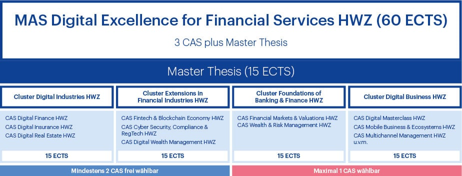 Aufbau MAS Digital Excellence for Financial Services