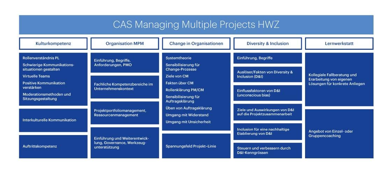 Inhalt CAS Multiprojektmanagement