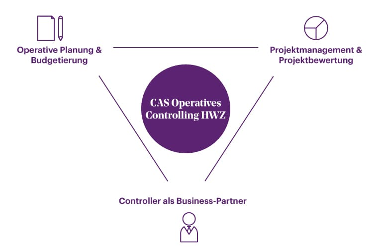 Module CAS Operatives Controlling HWZ