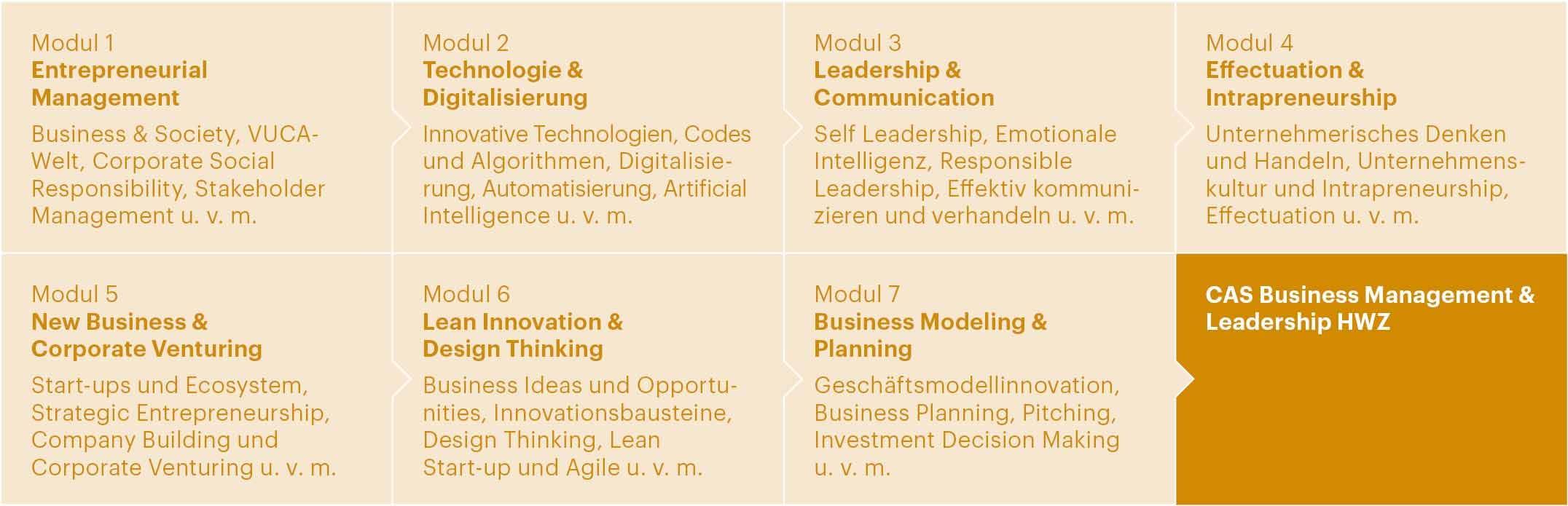 Aufbau CAS Business Management & Leadership HWZ