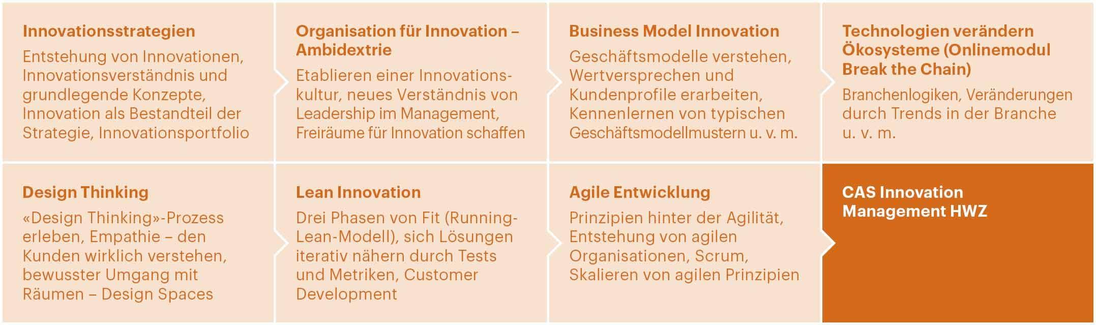 Grafik Business Model Innovation - CAS Innovation Management - HWZ