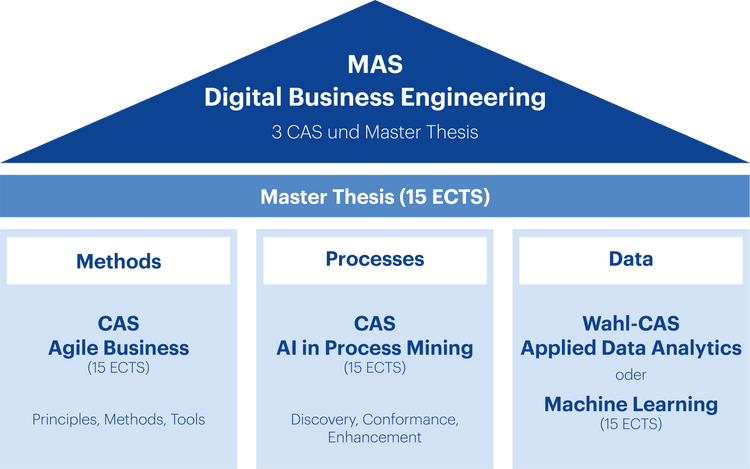 Grafik Aufbau MAS Digital Business Engineering