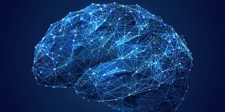 Bild Neuromarketing